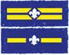 PL & APL Stripes