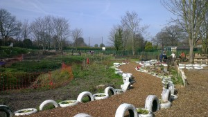 Brook Lane Community Garden