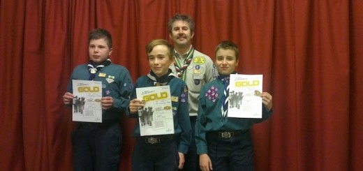 Chief Scout's Gold