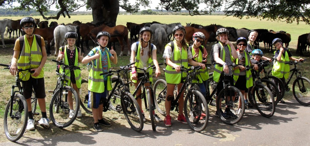 Summer Camp 2014 - New Forest